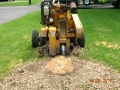 Carlton-Stump-Grinder-3.JPG