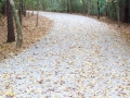 Gravel-Driveway-Contruction-Resurfacing.jpg