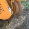 Stump Grinding Services Carlton SP4012